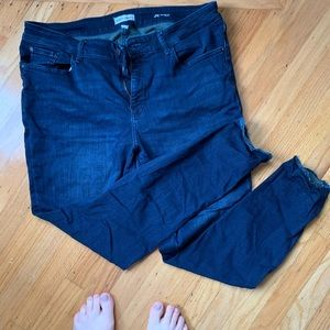 Warp + Weft JFK skinny jean plus size